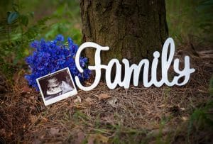 """A decorative photo of an ultrasound picture next to the word """"Family"""""""